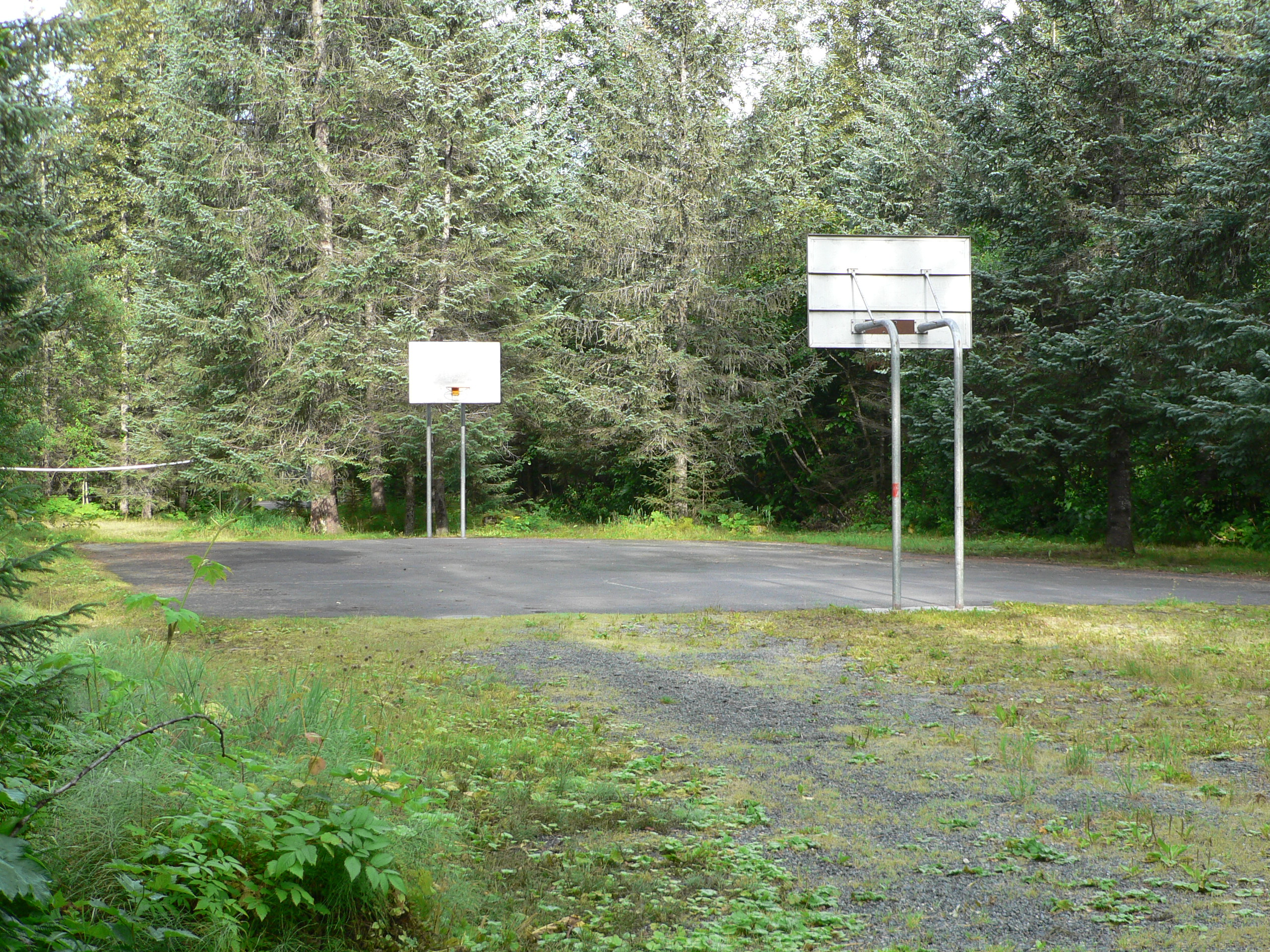 Alpine woods Basketball