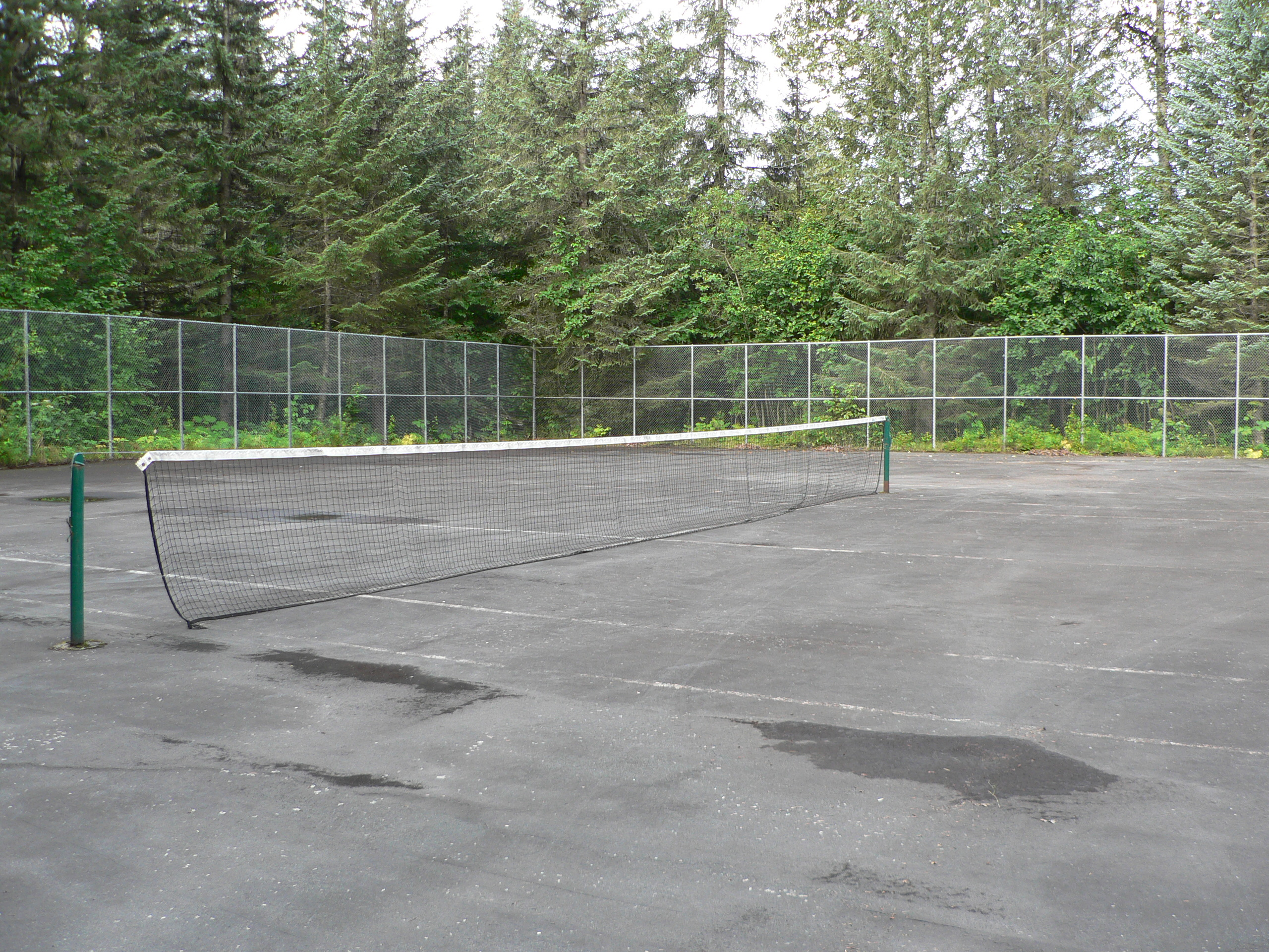 Alpine woods Tennis